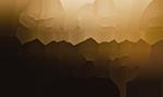 logo_gold (1)